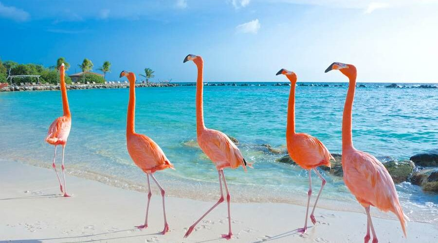top 15 insule romantice preferate de indragostiti